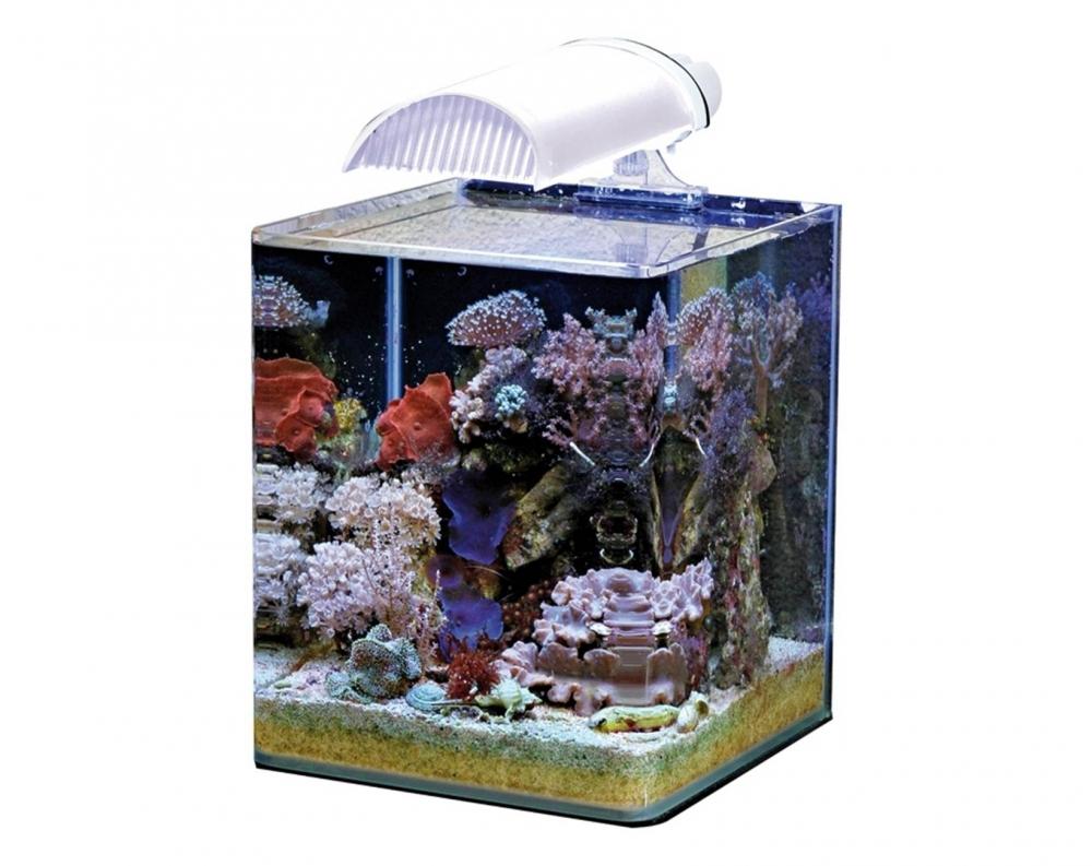 Аквариум Dennerle Nano Marinus Cube Complete PLUS 30 литров Полный Морской комплект Плюс - 2
