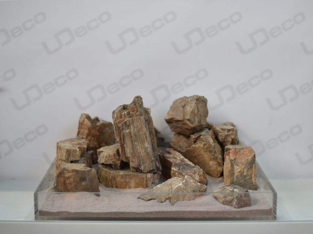 Природный камень Fossilized Wood Stone - 2