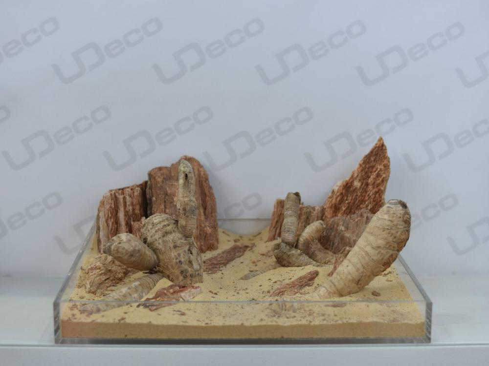 Коряга Bamboo Root - 1