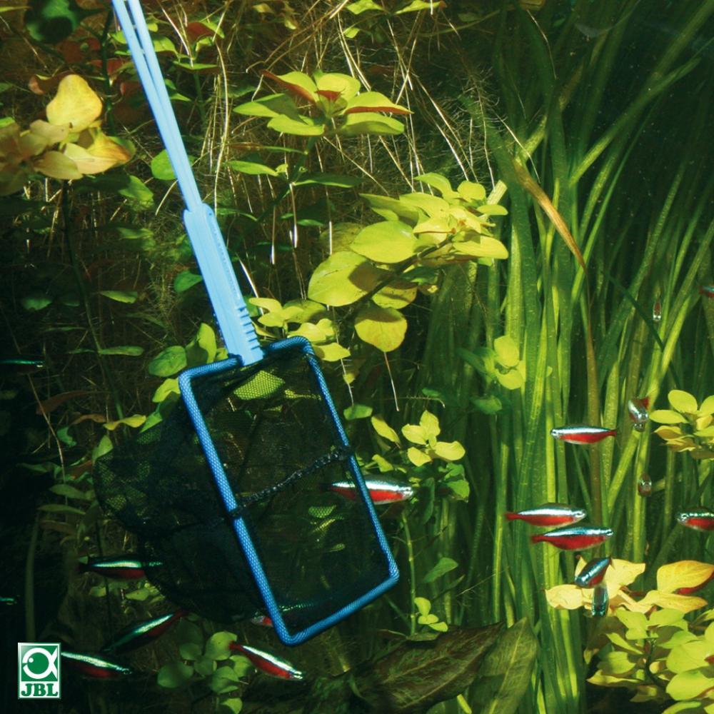 Сачок аквариумный JBL премиум, мелкие ячейки, черный, 12 см - 1