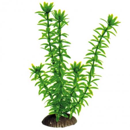 Пластиковое растение (20см) 023