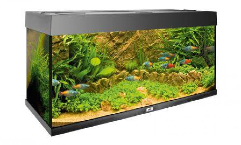 Сделать фон 3d в аквариум