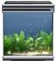 Аквариум Aquatlantis EVASION 56X56X60 , 165л. - 1