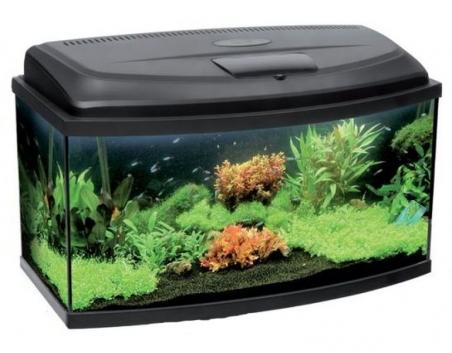 Аквариум Aquael Classic 60 Панорама (45л.)