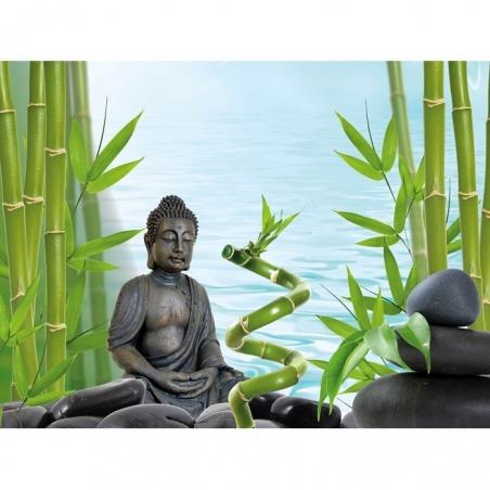 Фон пленочный двусторонний Tetra Deco Art Будда/Бамбук (60х45см.)