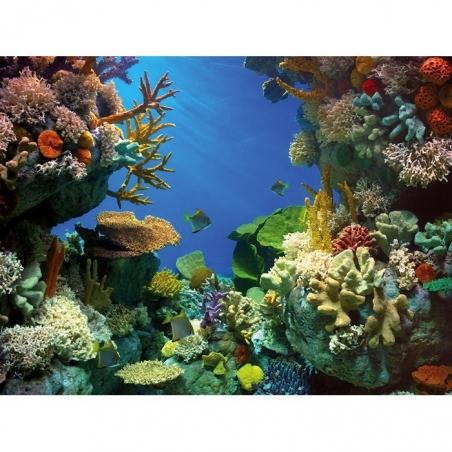 Фон пленочный двусторонний Tetra Deco Art Акула/Кораллы (60х45см.)