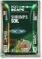 JBL ProScape ShrimpsSoil BEIGE, 3 л - Питательный грунт для аквариумов с креветками